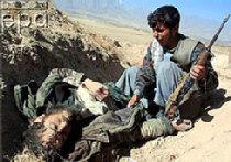 За грехи Талибана picture