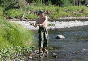 Русский медведь снимает шкуру: Путин на рыбалке picture