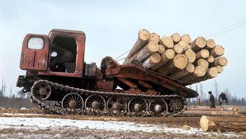 Трелевочник на заготовке древесины