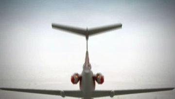 Динамическая графика: Крушение самолета польского президента