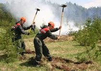 Авиалесоохрана во время тушения лесного пожара