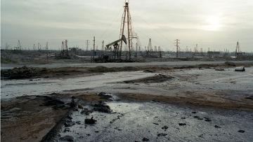 Жизнь, погруженная в нефть