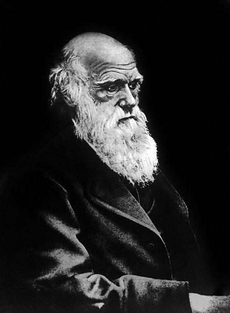 Английский естествоиспытатель Ч.Дарвин
