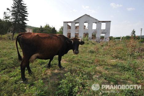 Жизнь в городе Цхинвали в Южной Осетии