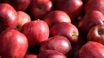 """Сорт яблок """"Ред Делишез"""""""