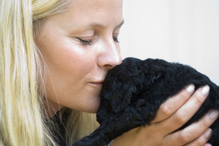 Кронпринцесса Метте-Марит с щенком