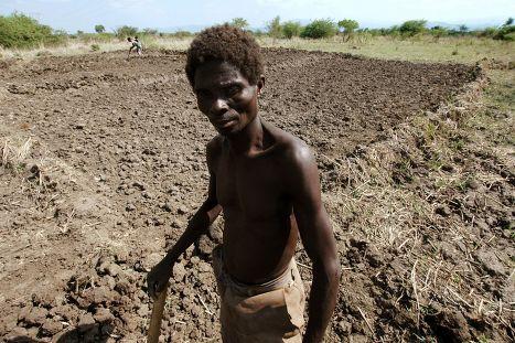 Засуха в Малави, архивное фото