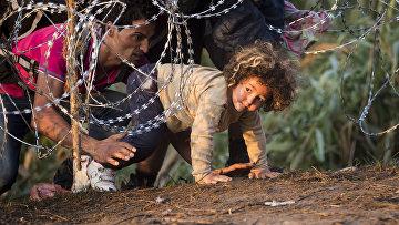 Мигранты переходят границу Сербии с Венгрией