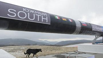 Начало строительства газопровода «Южный поток»