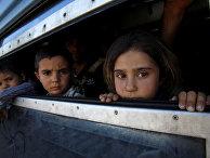 Дети-беженцы из Афганистана в поезде, идущем из города Гевгелия на юге Македонии в Сербию