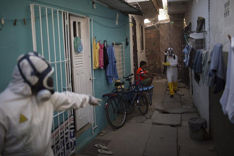 Сотрудники муниципальной службы во время операции по уничтожению комаров Aedes aegypti, переносящих вирус Зика в Ресифи