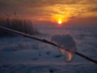 Зимний закат на берегу Финского залива