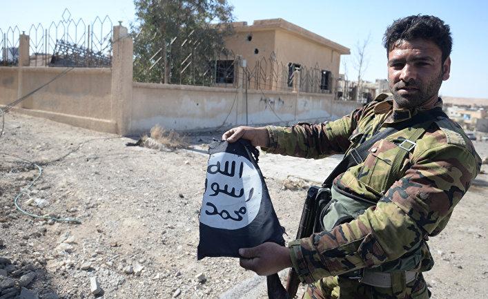 Боец сирийской армии в освобожденном от боевиков городе Эль-Карьятейне