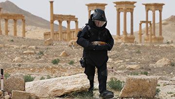 Разминирование исторической части и окрестностей Пальмиры сводным отрядом Международного противоминного центра Вооруженных Сил Российской Федерации