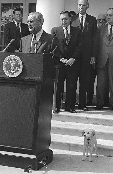 Линдон Джонсон, президент Соединенных Штатов