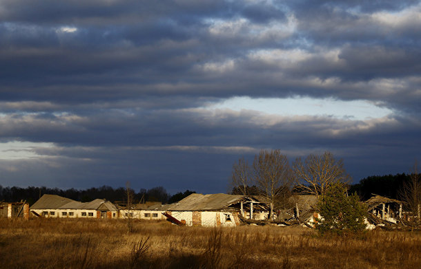 Чернобыль возрождается