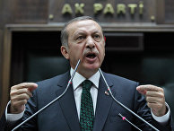 Премьер-министр Турции Реджеп Тайип Эрдоган обращается к парламенту в Анкаре