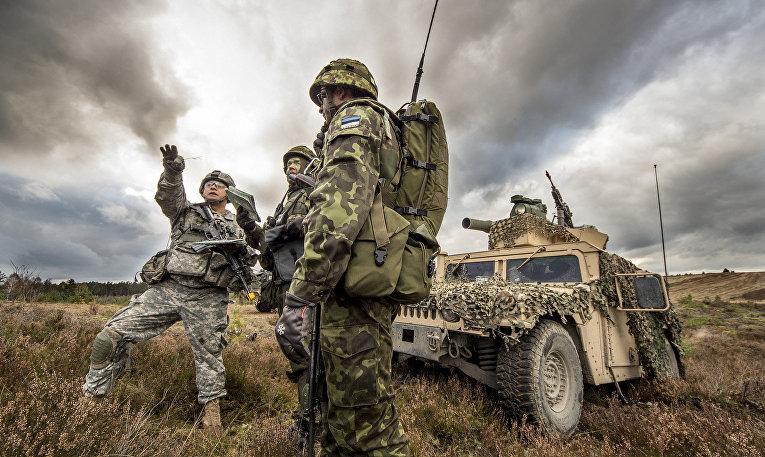 Солдаты США и Эстонии, совместные военные учения