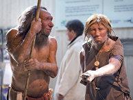 Реконструкция внешнего облика Неандертальцев в музее города Меттман