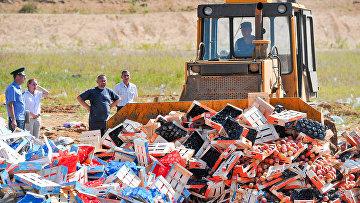 Уничтожение санкционной продукции возле города Новозыбков