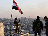 Сирийское правительственные войска в Алеппо