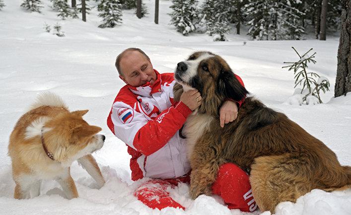Президент России Владимир Путин с собаками