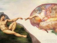 Мозг Сикстинской капеллы