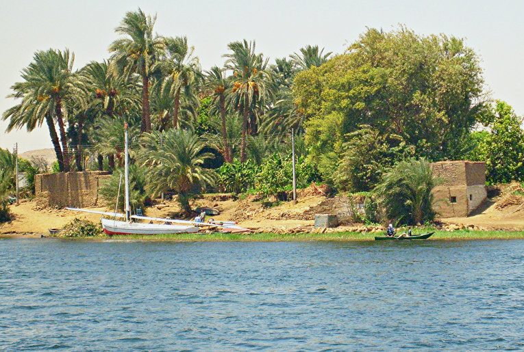 Берег реки Нил в Египте