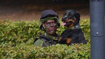 Учения вооруженных сил Швеции в городе Кристианстад