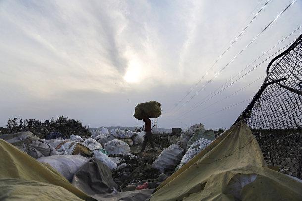 Мужчина несет сумки с мусором на окраине Джамму, Индия