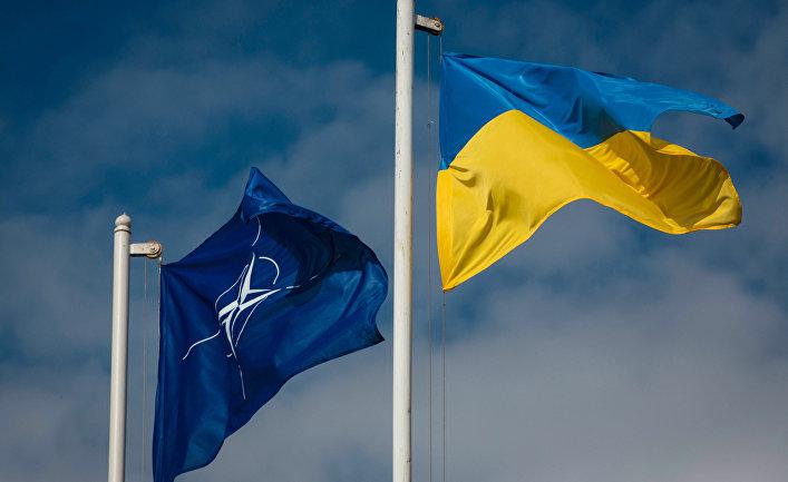 Национальный флаг Украины и флаг Организации Североатлантического договора