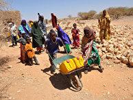 Африканцы за работой