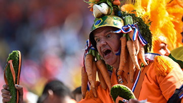 Футбол. Чемпионат мира - 2014. Матч Нидерланды - Чили