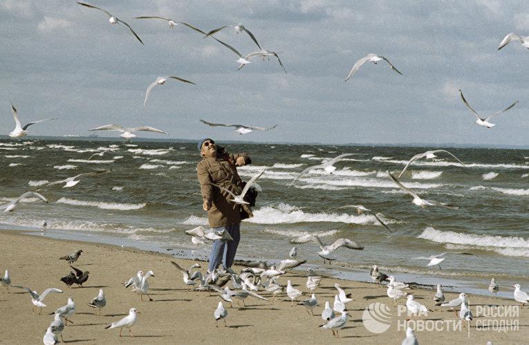 Курортник стоит на пляже города Юрмала в окружении чаек