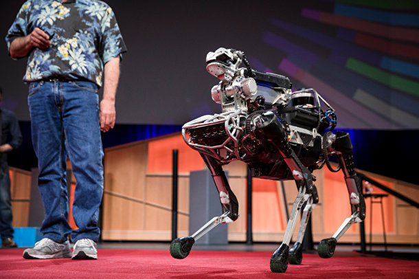 SpotMini, собакообразный робот Марка Райберта из Boston Dynamics