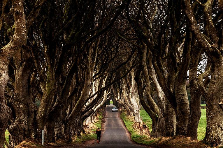 Темная Аллея, Северная Ирландия