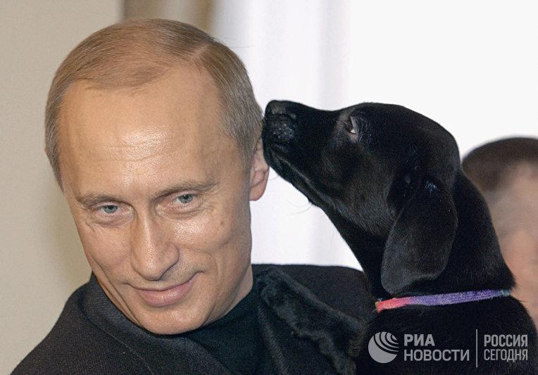 Президент России Владимир Путин с щенком
