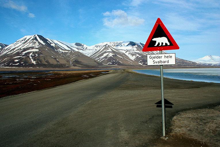 Знак, предупреждающий о белых медведях на Шпицбергене