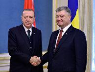 Президент Турции Реджеп Тайип Эрдоган и президент Украины Петр Порошенко во время встречи в Киеве