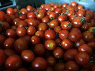 Помидоры на продуктовом рынке