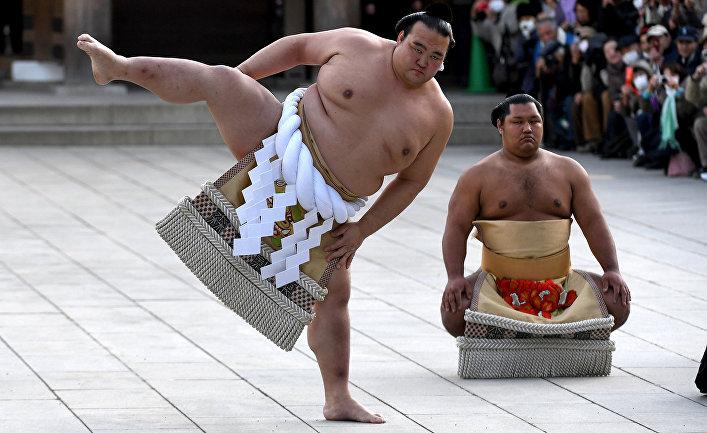бойцы сумо