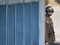 Северокорейский солдат смотрит в южную сторону