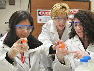 лаборатория, наука, женщина