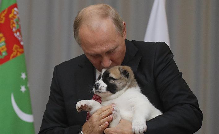 Президент России Владимир Путин целует туркменскую овчарку Алабая