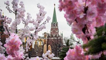 Вид на московский Кремль