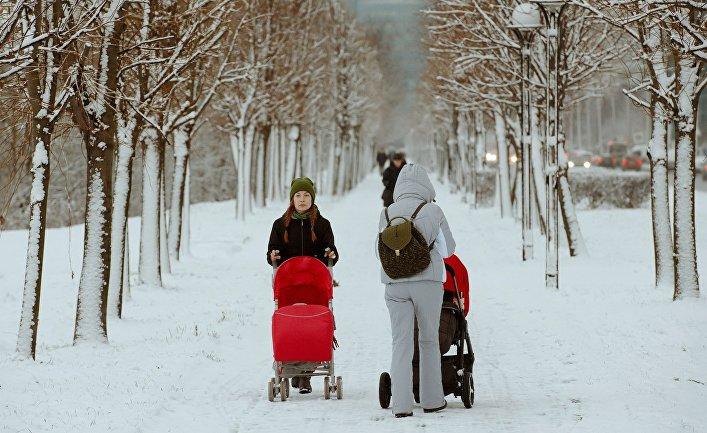 Женщины с колясками гуляют в Юнтоловском заказнике в Санкт-Петербурге