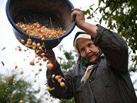 Пожилая женщина в деревне Доброджа, Молдова