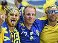 Шведские болельщики
