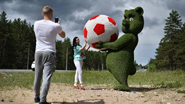 Медвежонок возле аэропорта Самары