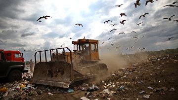 Рекультивация мусорных полигонов